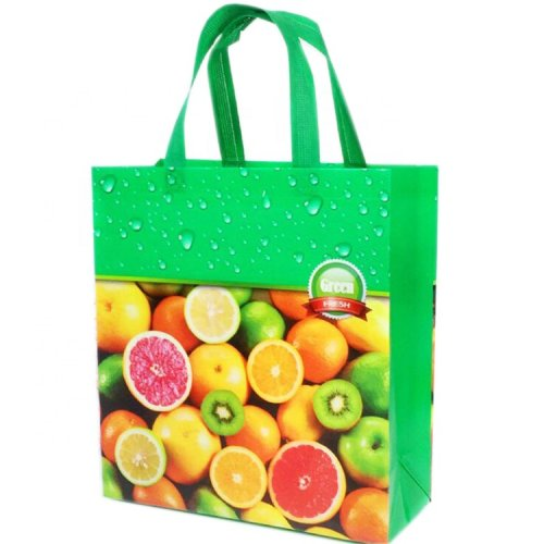 Cheap-price-PP-non-woven-bag-SP017-2