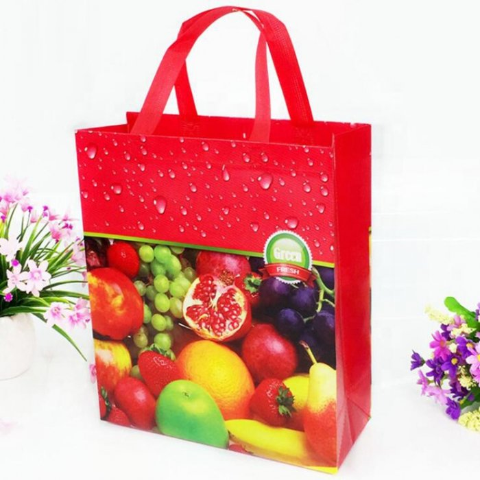 Cheap-price-PP-non-woven-bag-SP017-3