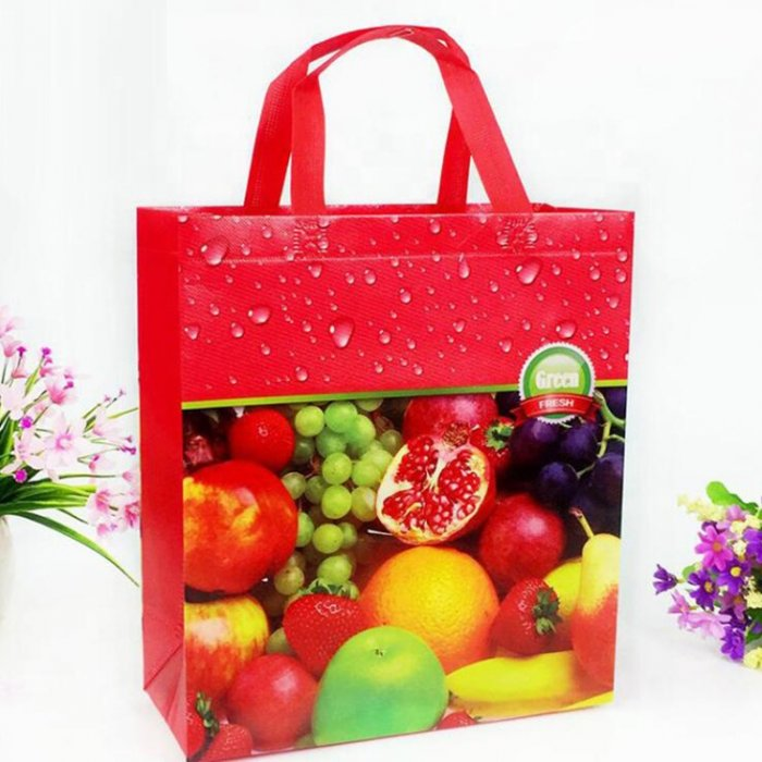 Cheap-price-PP-non-woven-bag-SP017-4