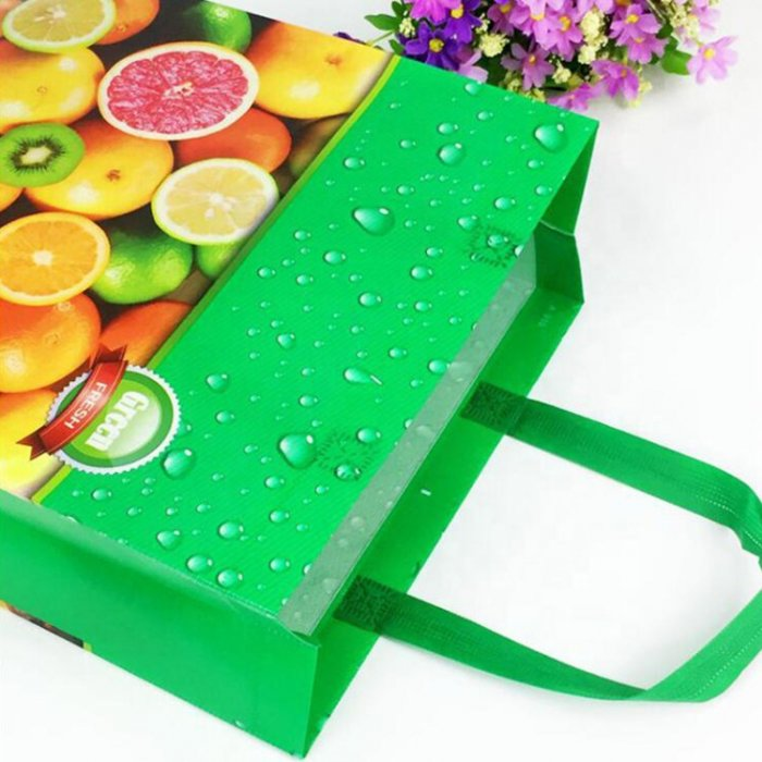 Cheap-price-PP-non-woven-bag-SP017-5
