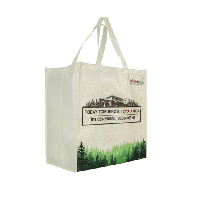 Laminated-Non-Woven-Shopping-Bag-SP007-3