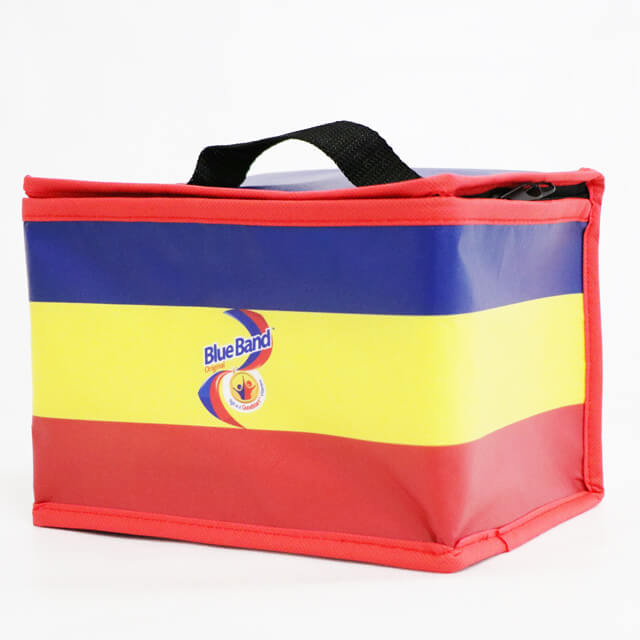 TPU-Ice-Cream-Food-Delivery-insulated-Cooler-Bag-6