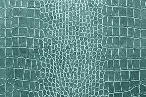 corodiale-texture