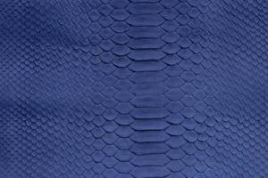 snake-texture